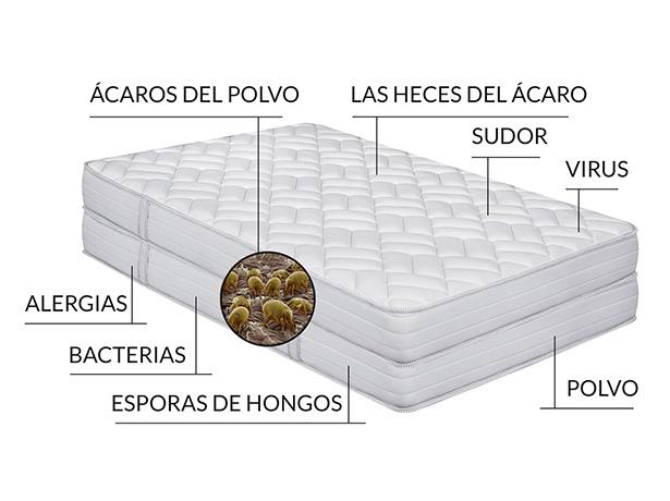 Alergia a los ácaros del colchón